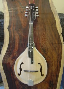 A model Infinity Mandolin in the white.